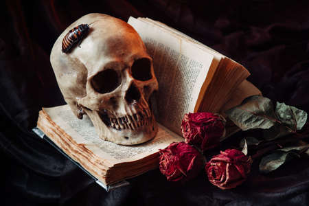 chronicle: Still life with skull, dry roses, antique book and candlestick