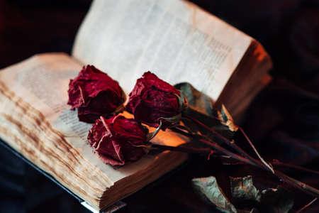 Natura morta con il vecchio libro e rose asciutte