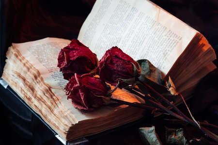 Stilleven met oude boek en droge rozen Stockfoto