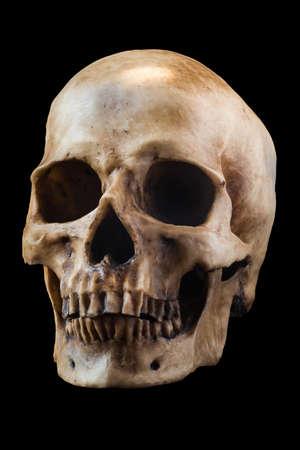 dark background: Terrible human skull isolated on black background