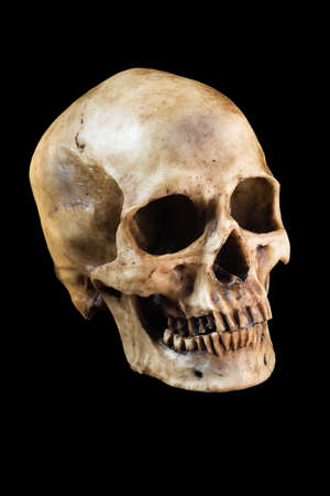 natural background: Terrible human skull isolated on black background