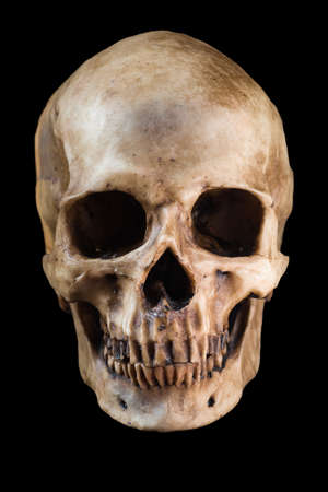 people on background: Terrible human skull isolated on black background
