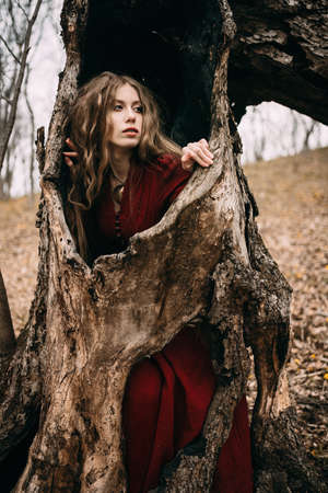 magical forest: Beautiful witch who lives in the woods Stock Photo