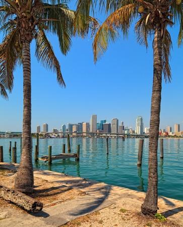 miami: Downtown Miami Panorama Skyline