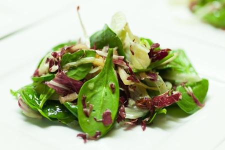 salad dressing: Fresh mixed leaf lettuce on a white background