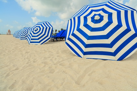 beach umbrella: Beautiful South Beach Umbrellas in Miami
