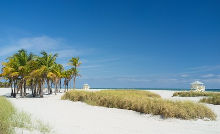 Beautiful Crandon Park Beach in Miami s Key Biscayne photo