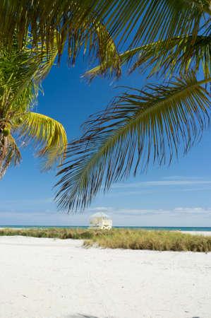 key biscayne: Beautiful Crandon Park Beach in Miami s Key Biscayne Stock Photo