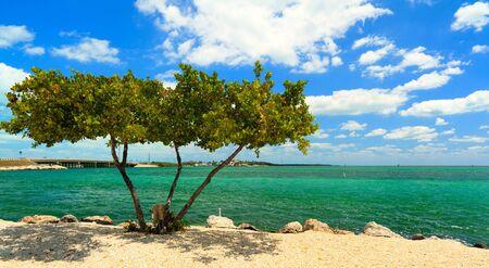 美しい青い空と雲とフロリダキーズの海岸線 写真素材