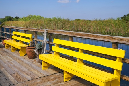 bayou swamp: Colorful bench in the Florida Everglades
