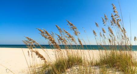 Beautiful Perdido Beach in Pensacola, Florida.