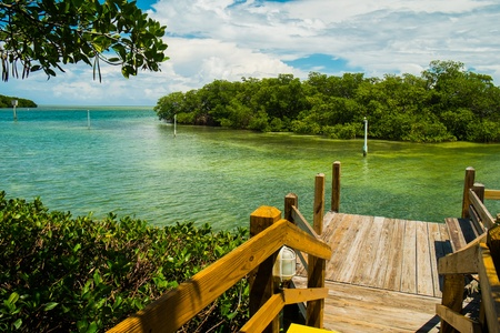 Beautiful view of the Florida Keys  photo