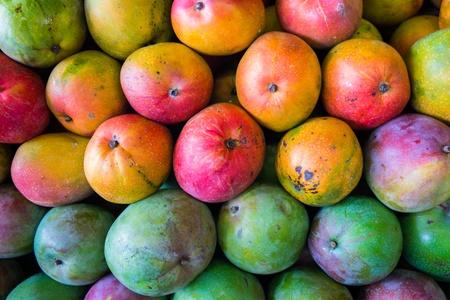 close up food: Close up view of ripe Florida mangos  Stock Photo