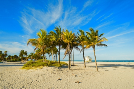 Beautiful Crandon Park Beach located in Key Biscayne in Miami