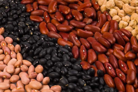 earthly: Collection of various beans side by side