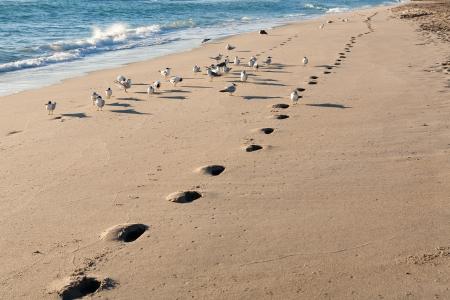 Einbuchtung: Jogger Fu�abdr�cke am Strand entlang K�stenlinie in den fr�hen Morgen.