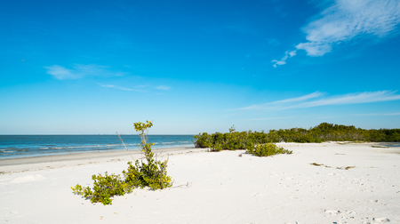 gulf of mexico: Pretty Fort Myers Beach on the west coast of Florida