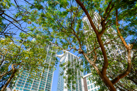 Skyward view of the Brickell area in downtown Miami  photo