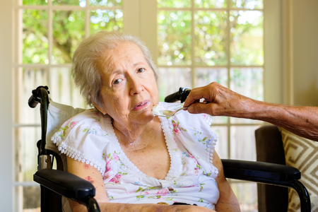 giver: Elderly eighty plus year old woman in a wheel chair being fed in a home setting.