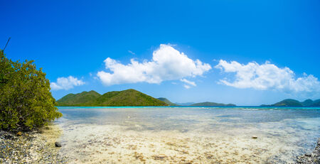 leinster: Beautiful pristine Caribbean beach in Saint John in the United States Virgin Islands. Stock Photo