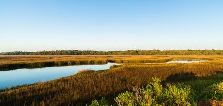 bayou swamp: Pretty nature preserve on Big Talbot Island in Jacksonville. Stock Photo