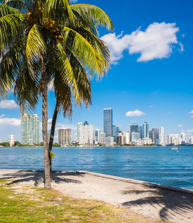 city of miami: Beautiful Miami skyline along Biscayne Bay with tall Brickell Avenue condos and downtown office buildings.