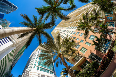 high rise buildings: Fish eye view of the Brickell area in downtown Miami. Stock Photo