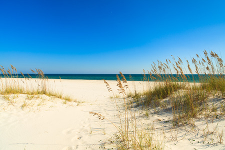 pensacola: Beautiful Perdido Beach in Pensacola, Florida.