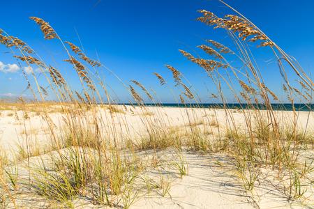 perdido: Beautiful Perdido Beach in Pensacola, Florida.