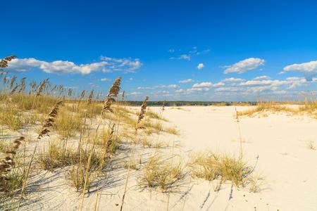 pensacola: Beautiful Perdido Beach in Pensacola, Florida.