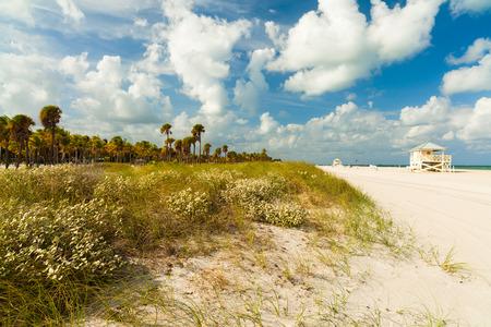 key biscane: Hermosa Crandon Park Beach ubicada en Key Biscayne en Miami. Foto de archivo
