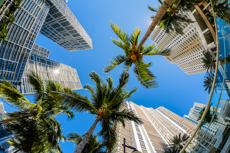 fish eye: Fish eye view of the Brickell Key area in downtown Miami along Biscayne Bay.
