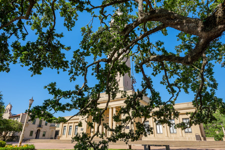 louisiana state: BATON ROUGE, LOUISIANA USA - MAY 5,2014: The 175 foot Memorial Tower, or Campanile, located on the Louisiana State University campus was erected in 1923 is a memorial to Louisianans who died in World War I.