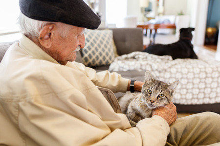 Elderly man with his pet cat in a home setting.