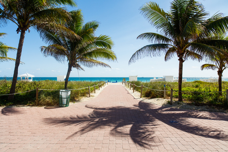 south beach: The natural beauty of Miami Beach on a clear blue sky day. Stock Photo