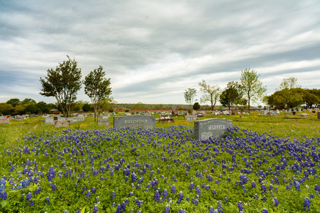 small country town: Dripping Springs, Texas USA - April 6, 2016: Phillips Cemetery with bluebonnets on a cloudy stormy day in this small town in the Texas Hill Country.
