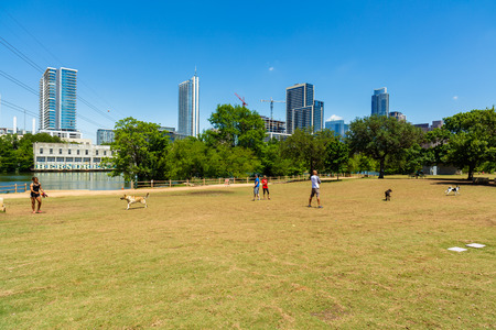 dog park: Austin, TX USA - April 14: Popular dog park along Auditorium Shores with the downtown skyline in the background. Editorial