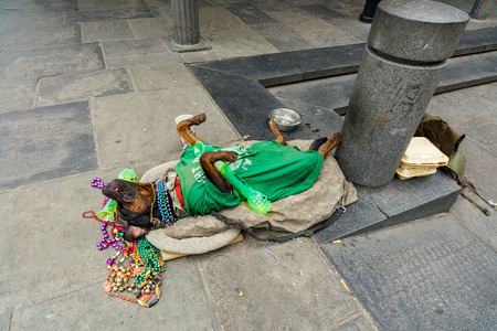 bourbon street: New Orleans, LA USA - April 20, 2016: A dog street performer playing dead in the historic French Quarter district.