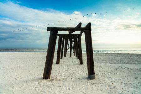 panama city beach: The skeletal remains of an old wooden pier on a Florida panhandle beach with a flock of pelicans flying by in the late afternoon.