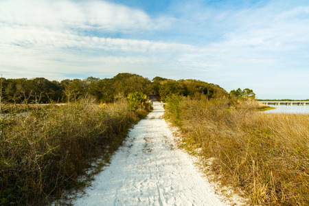 panama city: Beautiful nature trail along Philips Inlet in the North Florida panhandle area near Panama City.