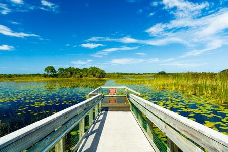 Beautiful nature preserve in Port Saint Lucie Florida.