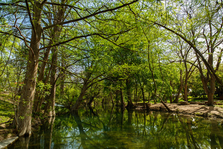 small country town: The natural beauty of the Texas Hill Country in the small town of Wimberley.