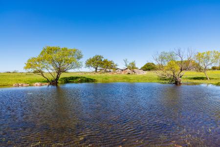 rancho: Bastante pequeño estanque en un rancho en las colinas de Texas.