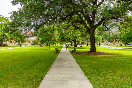 Typical American college campus.