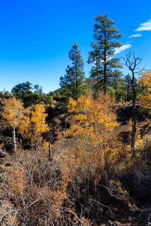 The natural beauty of the Sunset Crater Volcano in Flagstaff, Arizona.