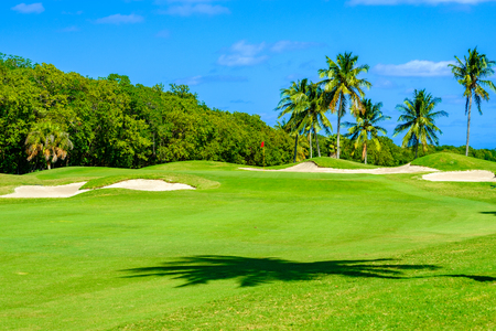 Beautiful golf course landscape in Miami.