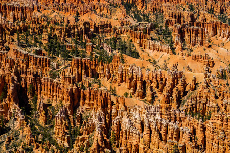 Close up view of the natural beauty of the magnificent hoodoos in Bryce Canyon National Park in Utah.