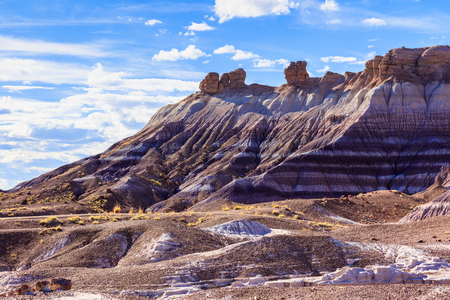 Desert landscape of the beautiful petrified forest in Arizona.