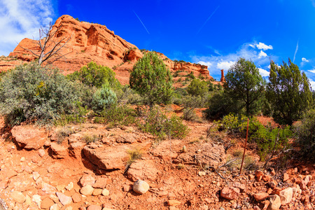 The natural beauty of the red rock sandstone in the Boynton Canyon Trail in Sedona, Arizona. Stock Photo