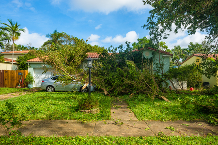 Miami, Florida - September 11, 2017: Debris filled front yard of a typical home as a result of Hurricane Irma in the neighborhood of West Miami.